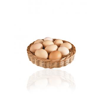 Pack de 30 œufs beldi bio