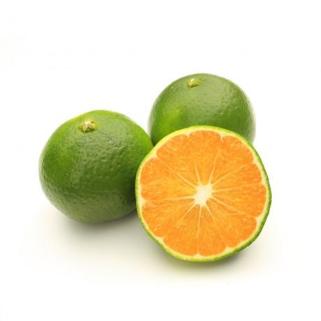 Mandarine