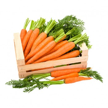 10kg carottes