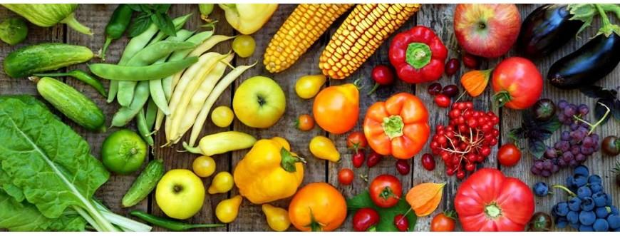 Ventes & Distribution de Légumes à Casablanca